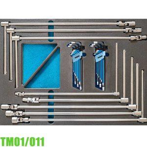 TM01/011 Bộ đồ nghề 26 món gồm tay vặn chữ T và lục giác FERVI Italia
